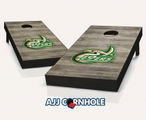 UNC Charlotte 49ers Distressed Cornhole Set