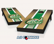 UNC Charlotte 49ers Striped Cornhole Set