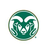 Colorado State Cornhole Sets