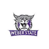 Weber State Cornhole Sets